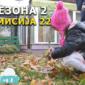 МИНИ ВЕСТИ: Креативните дечиња од градинката 8 ми Март